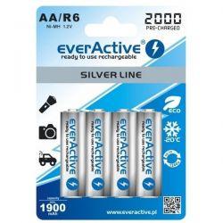 4x everActive R6 / AA 2000...