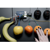 Adafruit Capacitive Touch...
