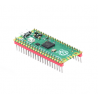 Raspberry Pi Pico (With Soldered Header)
