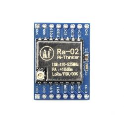 Development Board Ra-02...